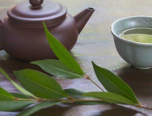 تداخل چای سبز با داروهای فشارخون