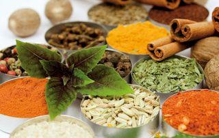 مصرف دمنوش های گیاهی و دارویی دم نوش چای سبز