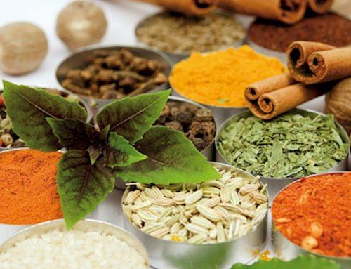 ۵ نکته در مصرف دمنوش های گیاهی که باید دانست