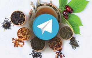 گروه تلگرام نیوشا