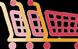 سبد خرید نیوشا نحوه خرید از سایت اصلی نیوشا روش خرید از نیوشا
