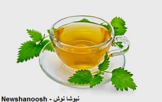 گزنه چیست فواید عرق گزنه دمنوش گزنه دمنوش گیاهی گزنه عوارض گزنه مضرات گزنه چای گزنه